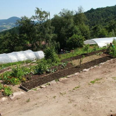 Le jardin en biodynamie des Allagouttes : d